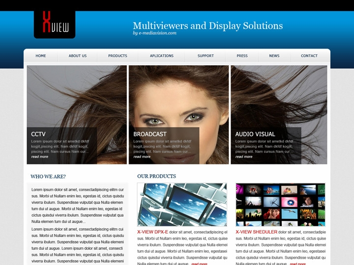 Web Design / Multiviewer Software Company