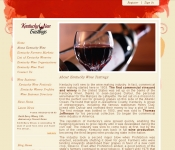Portfolio / 2010 / Wine Business Portal